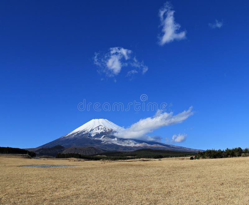 富士山在冬天 免版税库存照片