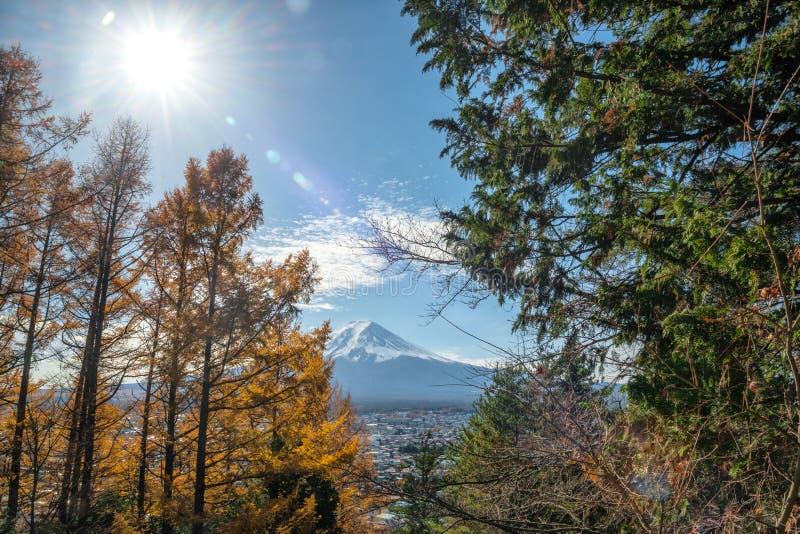 富士山看法有五颜六色的杉树一个美丽的前景的从Chureito塔观点在晴天,日本 免版税库存照片