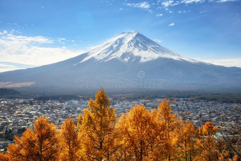 富士山看法有美国长叶松树从Chureito塔观点,日本一个美丽的前景的  库存照片