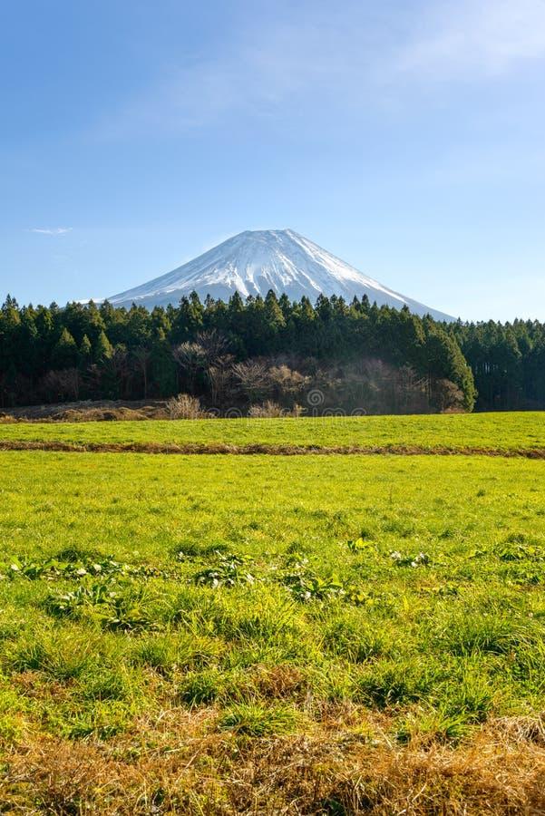 富士山,日本看法有一片美丽的农场土地的 免版税库存照片