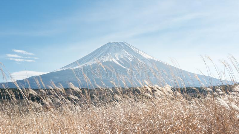 富士山,日本看法有流动干草的 免版税库存图片