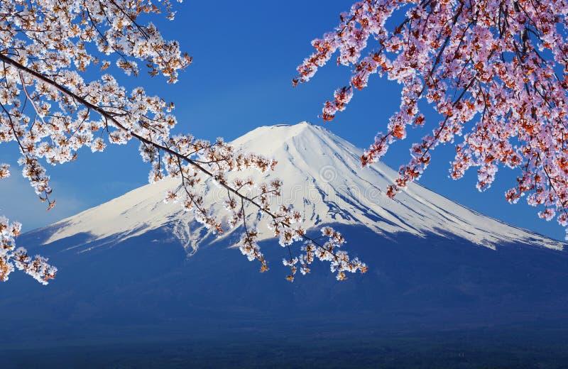 富士山,从湖Kawaguchiko的看法 图库摄影