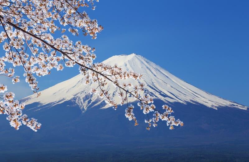 富士山,从湖Kawaguchiko的看法 免版税库存照片