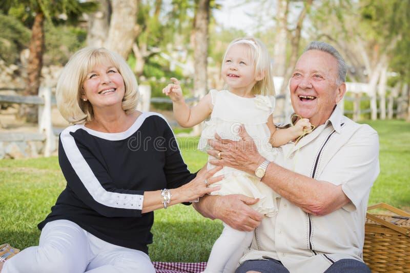 富感情的使用在公园的孙女和祖父母 库存照片