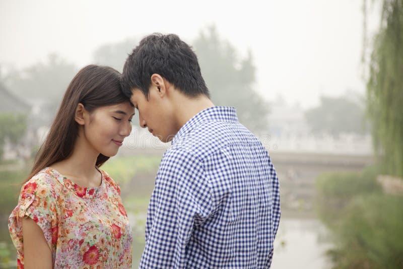 富感情的由运河的夫妇感人的头 库存照片