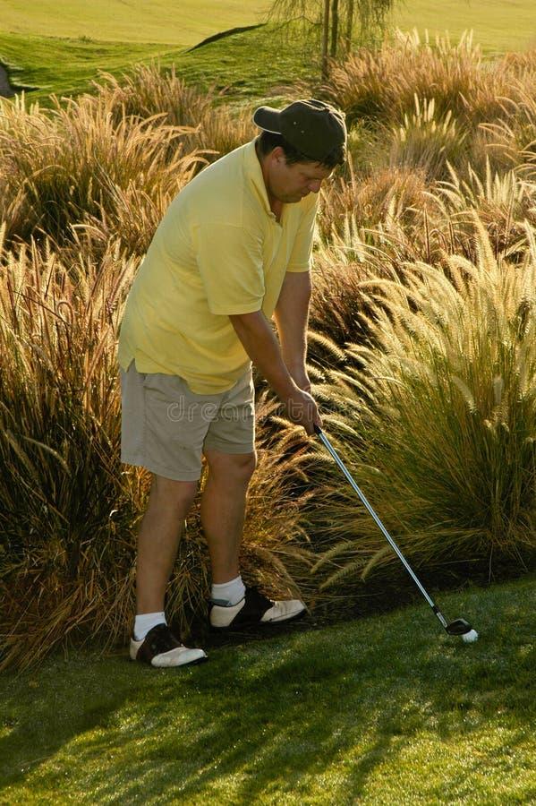 富挑战性的高尔夫球球击 免版税图库摄影