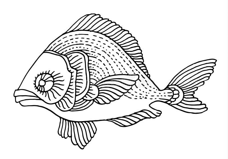 富有地装饰的鱼手图画 向量例证