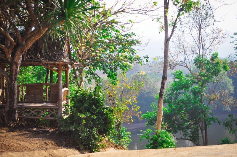 富有的绿色自然,在河的一个小屋的美好的风景看法与棕榈树的在异乎寻常的泰国 库存照片