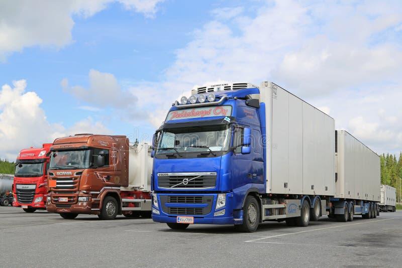 富豪集团、斯科讷和DAF卡车停放在卡车停留站 免版税库存照片