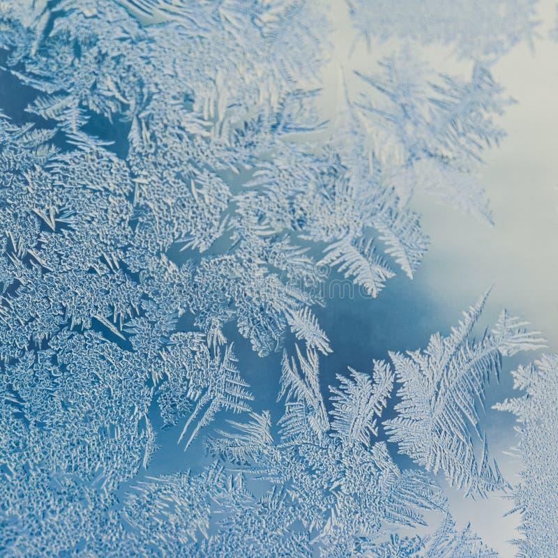 寒假季节幻想世界概念:FWinter节日幻想世界概念的宏观图象:宏观图象的蓝色 库存图片