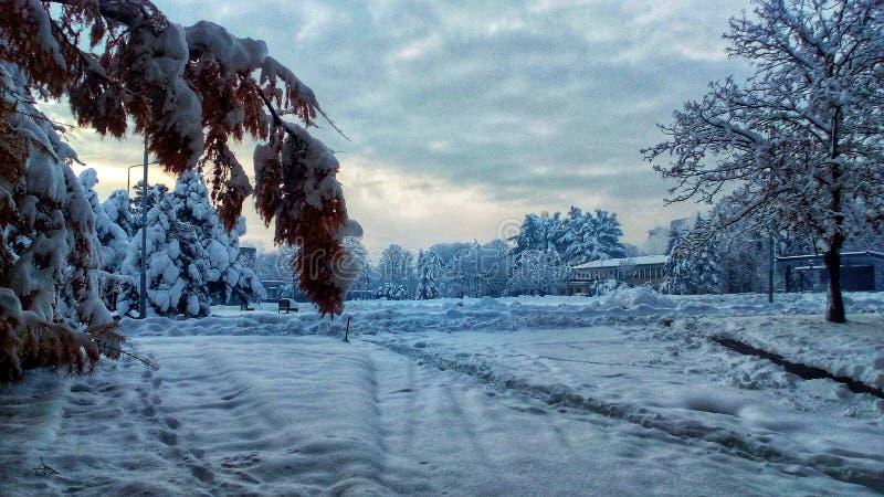寒冷冬天在中心贝尔格莱德塞尔维亚 免版税库存照片