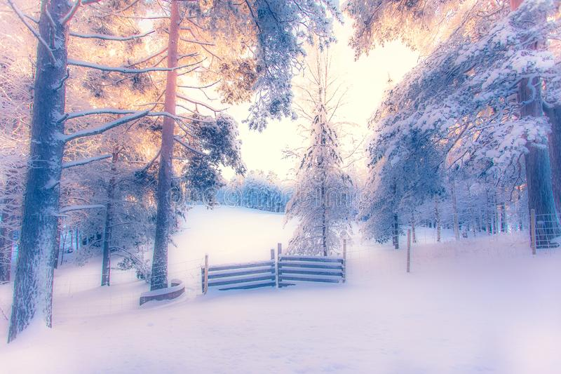 寒冷冬天天日落视图 从索特卡莫,芬兰的照片 库存照片