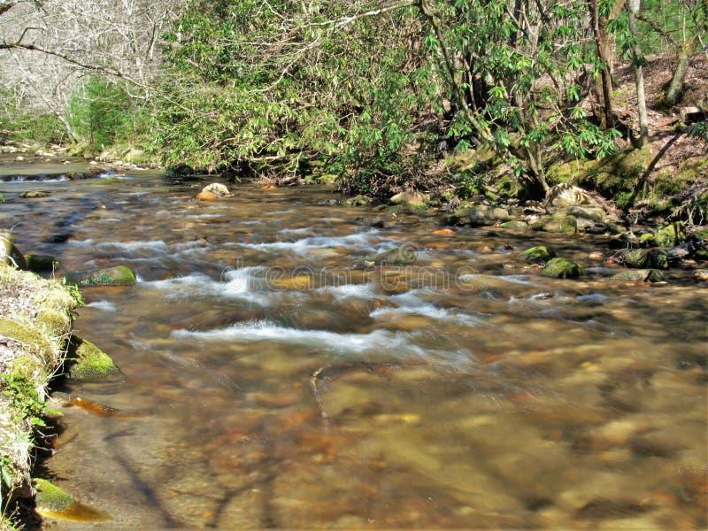 寡妇在斯通山国家公园的` s小河 库存图片