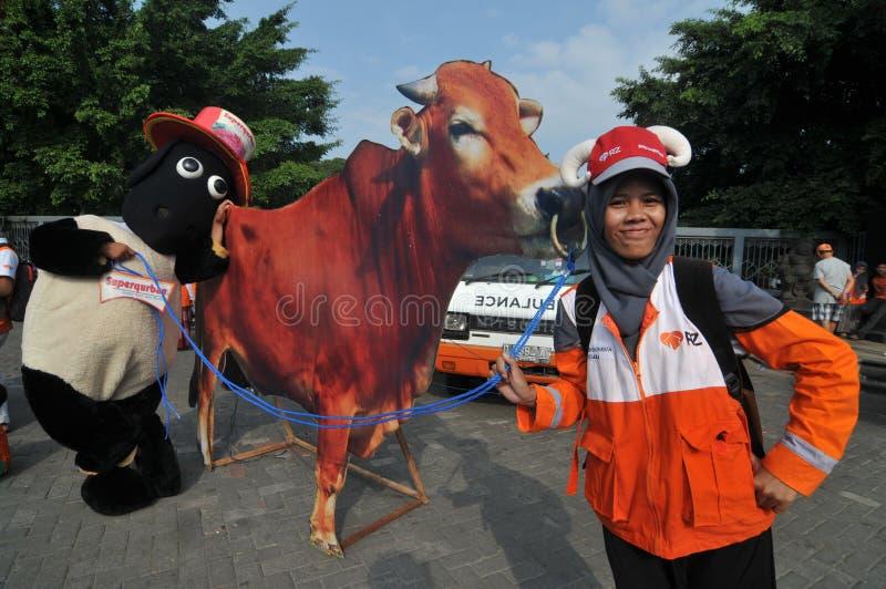 对'牺牲的'一次竞选在Eid AlAdha庆祝前在印度尼西亚 免版税库存图片