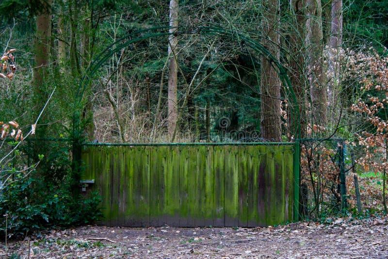 对一个神秘园的门 库存图片