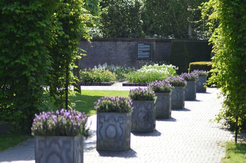 对一个美丽的公园的一个美好的春日在Nederland 免版税库存照片
