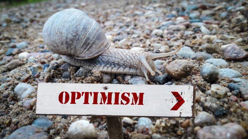 对乐观的路牌 向量例证