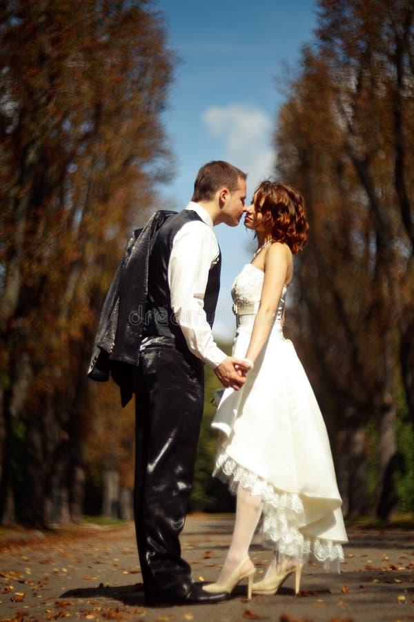 对亲吻的步-婚礼夫妇在秋天公园附近走 库存照片