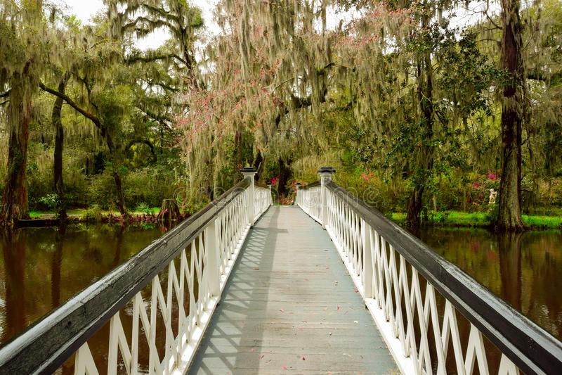 对伊甸园的桥梁 免版税库存图片