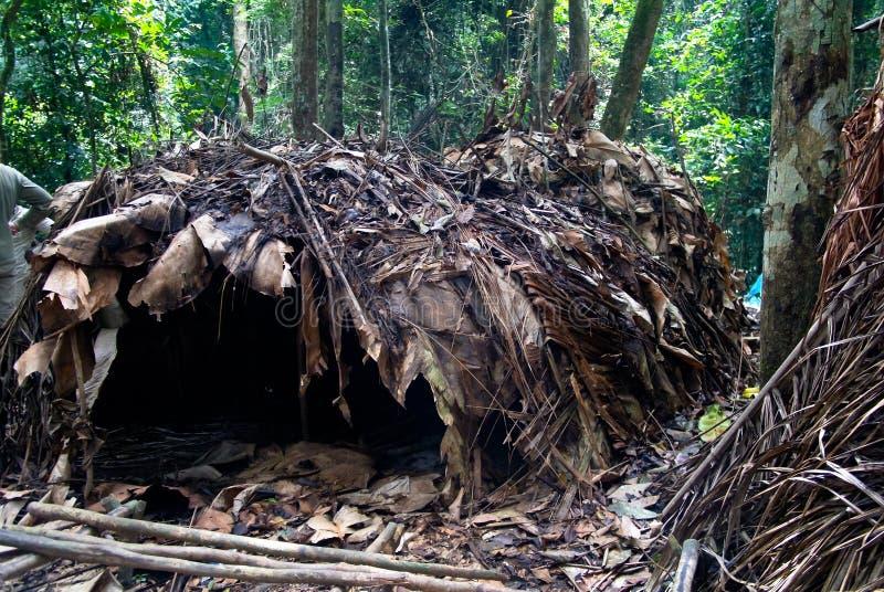 对侏儒鲍卡村庄, Dja国家公园的看法在喀麦隆 免版税库存图片