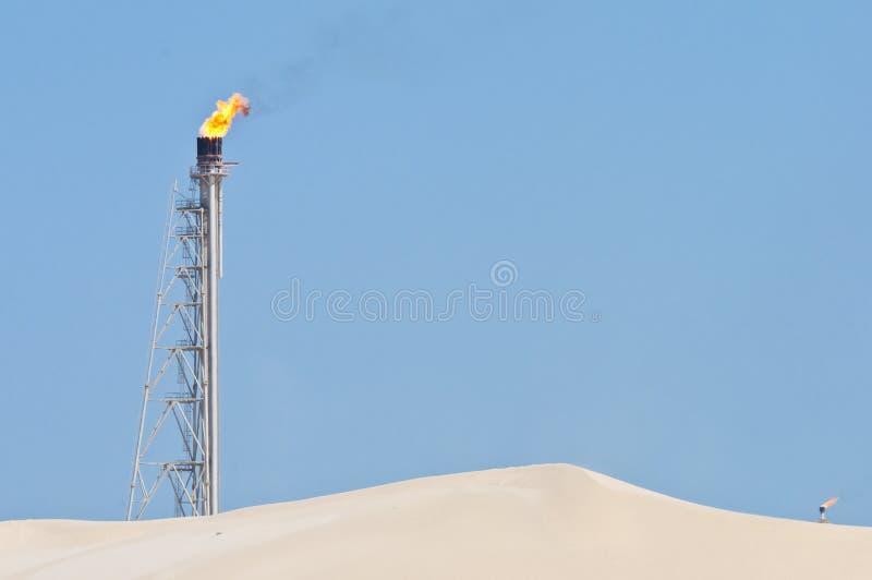对光检查沙漠发火焰 免版税库存照片