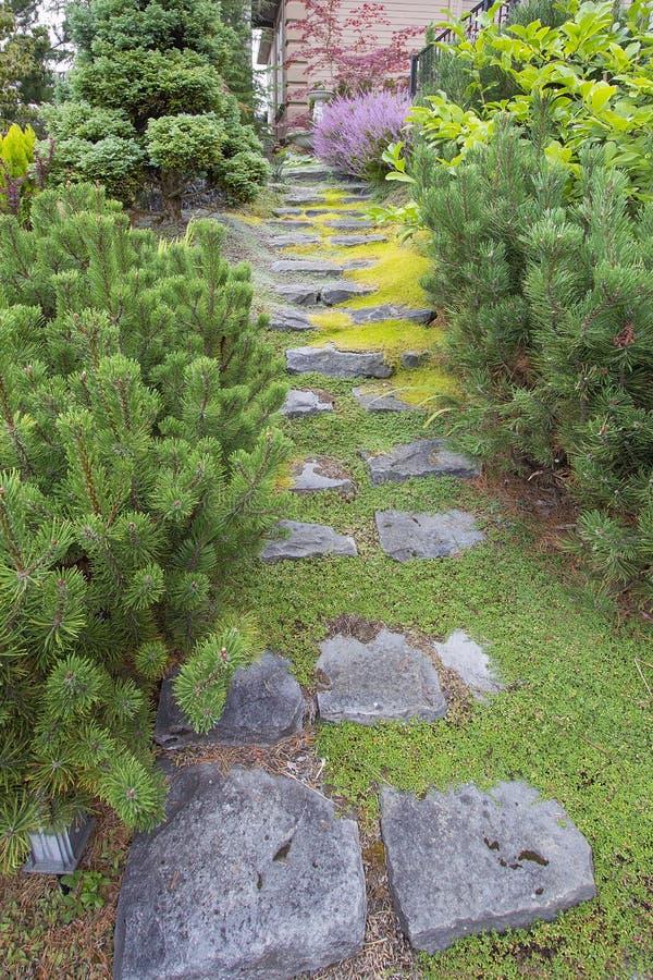 对前院庭院的自然石步 库存图片