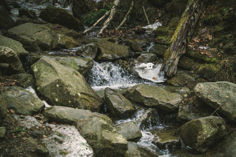 对喀尔巴阡山脉的山小河 snowmelt在春天 东欧,乌克兰野生生物  免版税库存图片