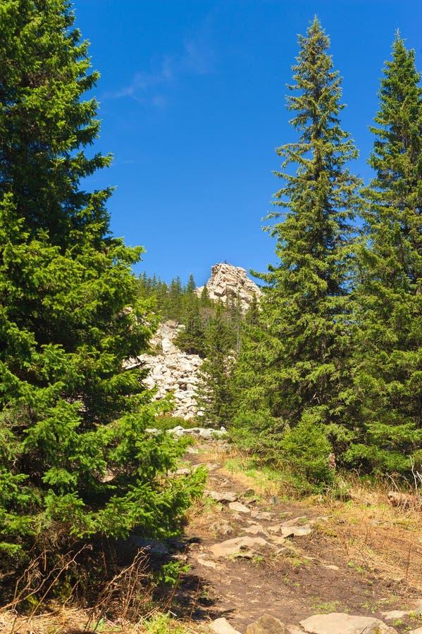 对土坎Zyuratkul的攀登沿大石头道路  图库摄影
