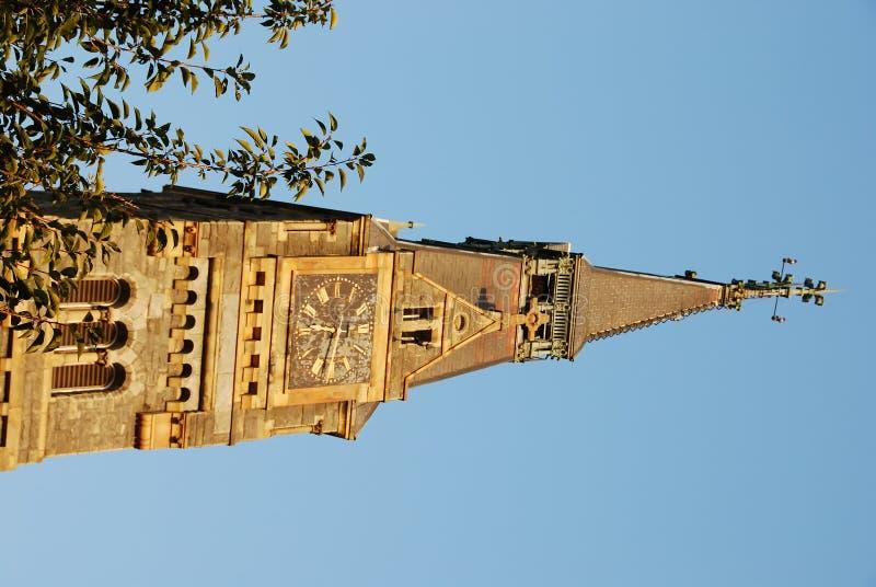 对大学的时钟乔治城 库存照片