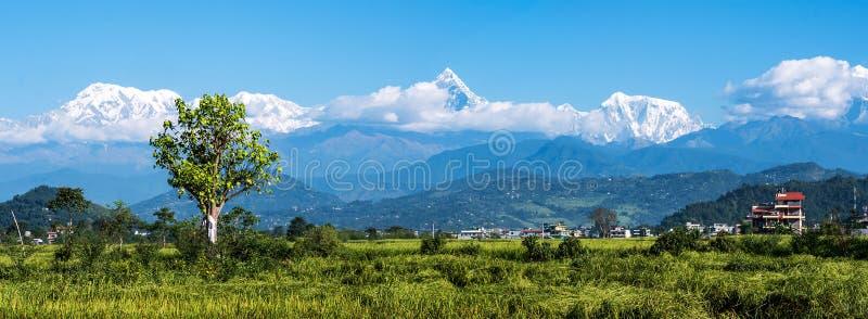 对安纳布尔纳峰山脉,尼泊尔的全景山景 库存照片