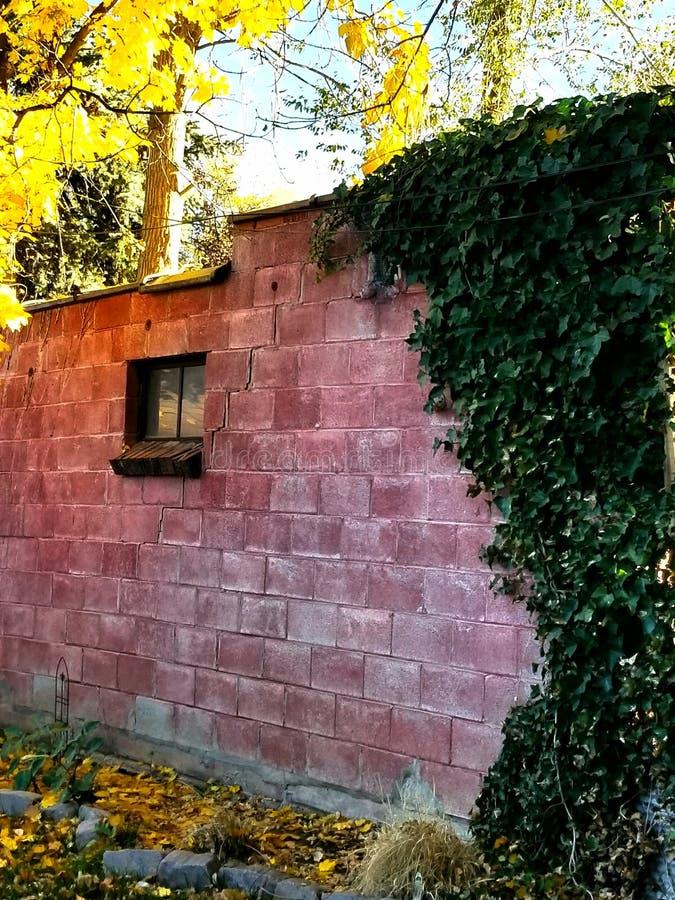 对对墙壁的窗口 免版税图库摄影