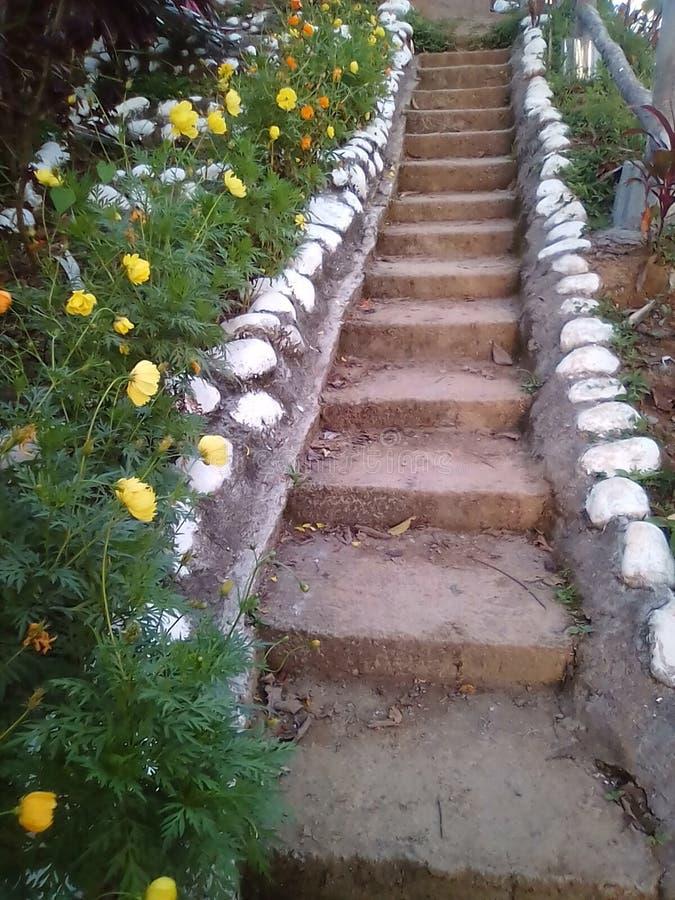 对小山顶的楼梯 免版税库存图片