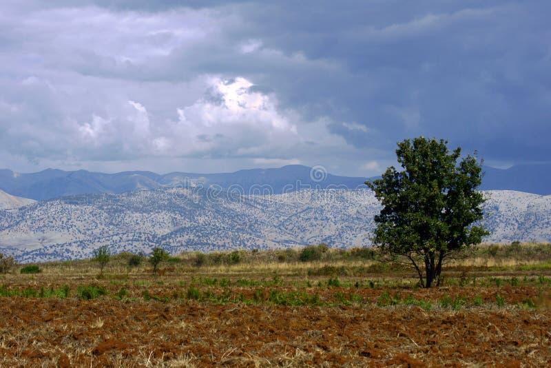 对山的视图在从科孚岛海岛的阿尔巴尼亚 库存图片