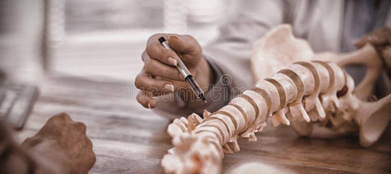 对患者的医生解释的解剖脊椎 库存图片