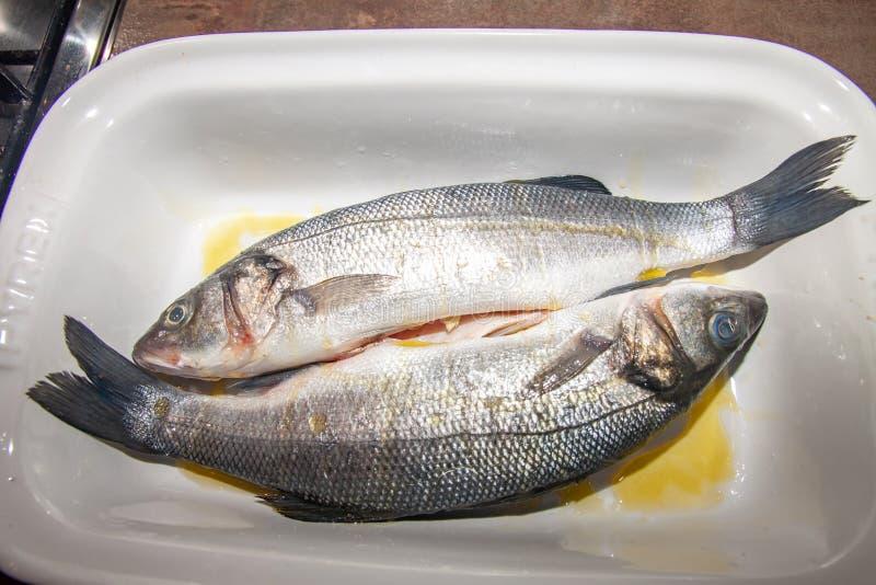 对新鲜的鲈鱼,在白色平底深锅,在橄榄油 库存图片