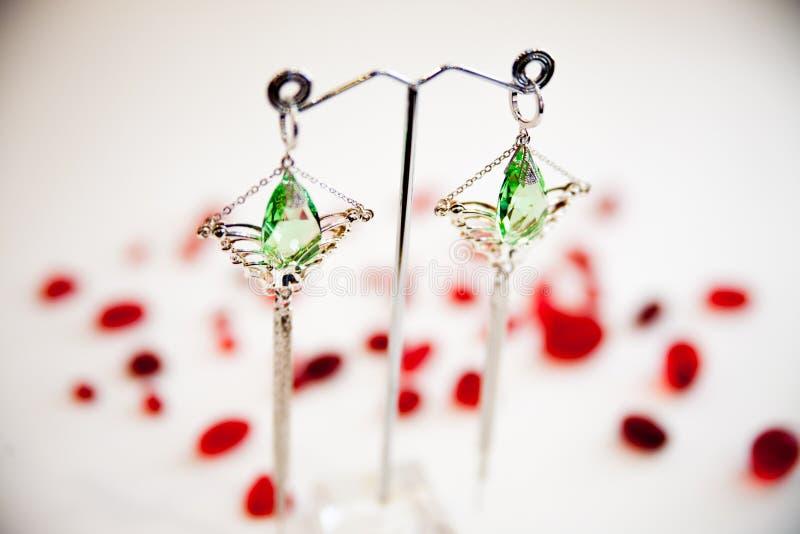 对有宝石的美丽的银色耳环在自然本底 图库摄影