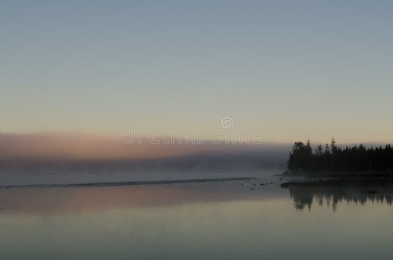 对桔子的现出轮廓的树木丛生的jeetty点在与礁石的镇静海湾发出丁当声雾在黎明和处于低潮中被反射 库存图片