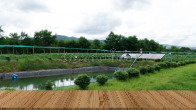 对水泵的太阳能电池供应的能量在农场 光致电压 库存图片
