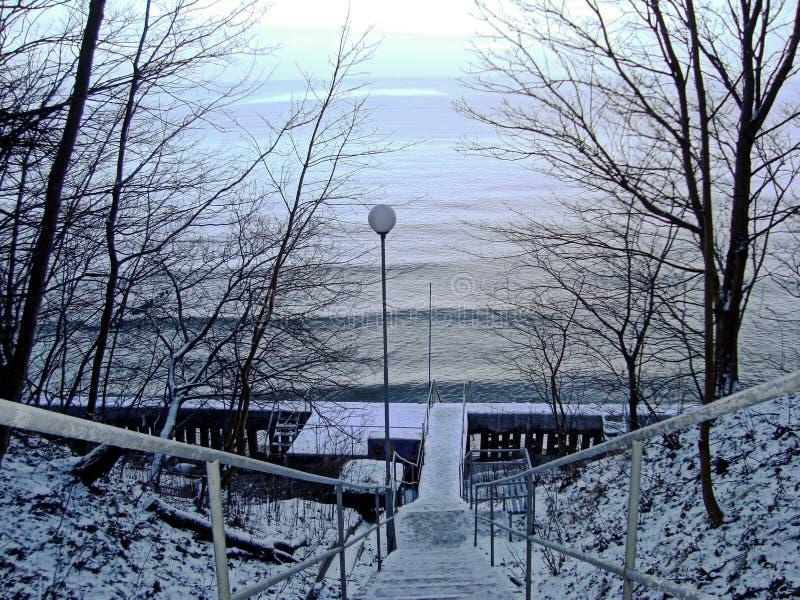 对水的下降在积雪的冬天公园 免版税库存图片