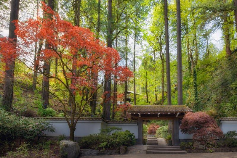对波特兰日本庭院春天的门户 免版税库存图片