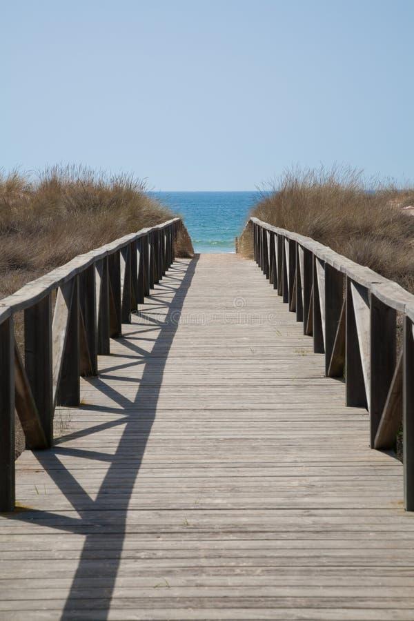 对海洋垂直的木方式 库存照片