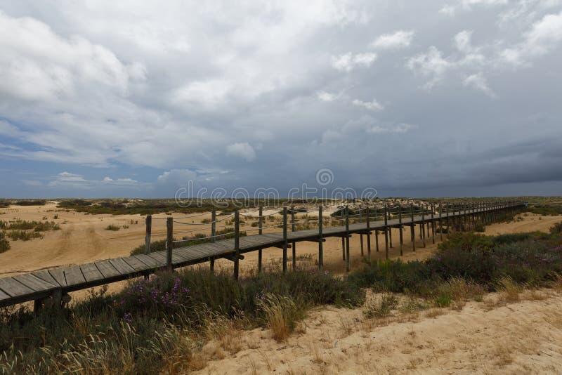 对海滩的路在Culatra海岛上在Ria福摩萨,葡萄牙 图库摄影