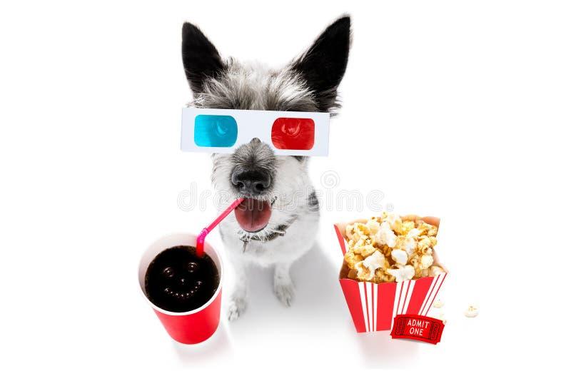 对电影的狗 免版税库存图片