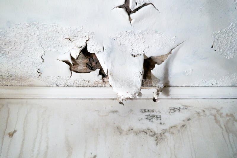 对白色天花板的水损伤 免版税图库摄影