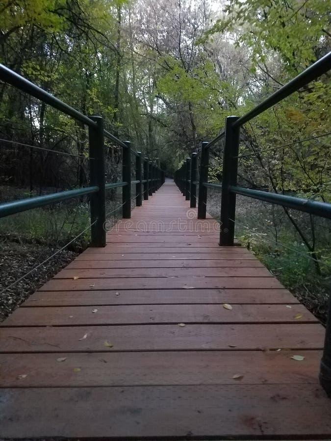 对的桥梁? 免版税库存图片