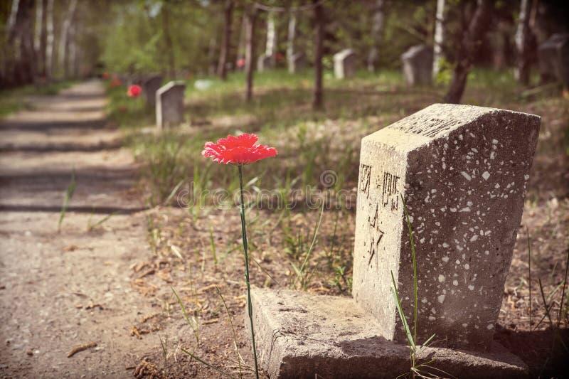 对的纪念碑下落与被分配的颜色的第二次世界大战 免版税图库摄影