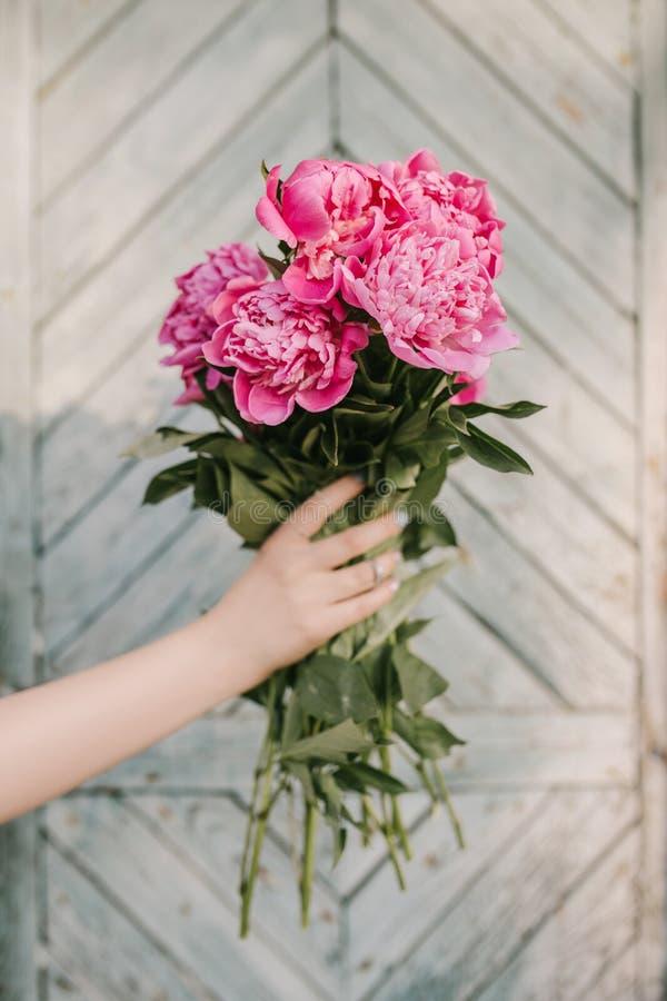 对礼品的花 美丽的毛茛属在女性手上 春天和启发 浅兰的背景 免版税库存照片