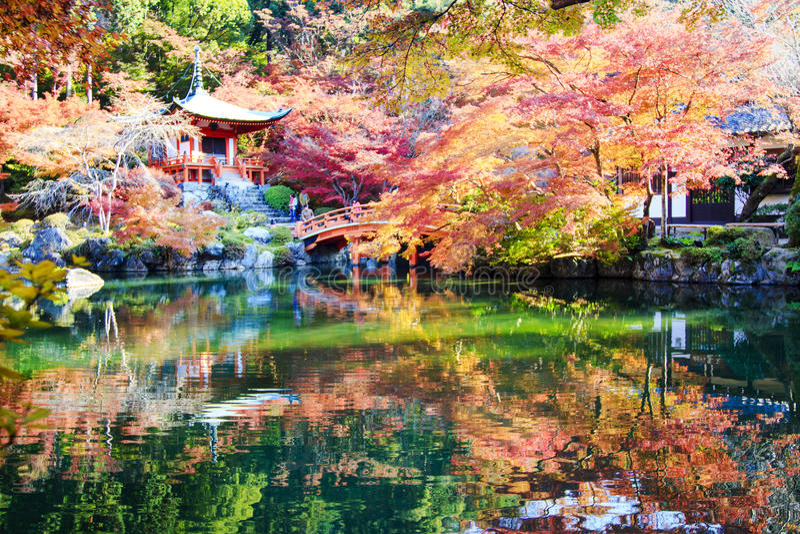 对秋天的旅客旅行在daigoji寺庙,京都,日本 库存图片