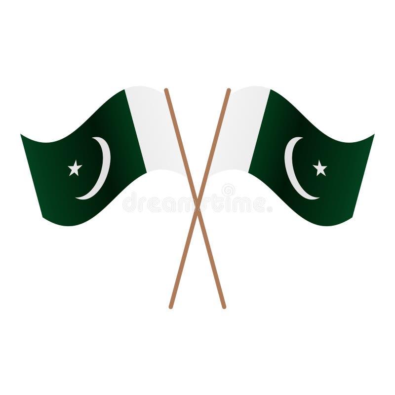 对称横渡的巴基斯坦旗子 库存例证
