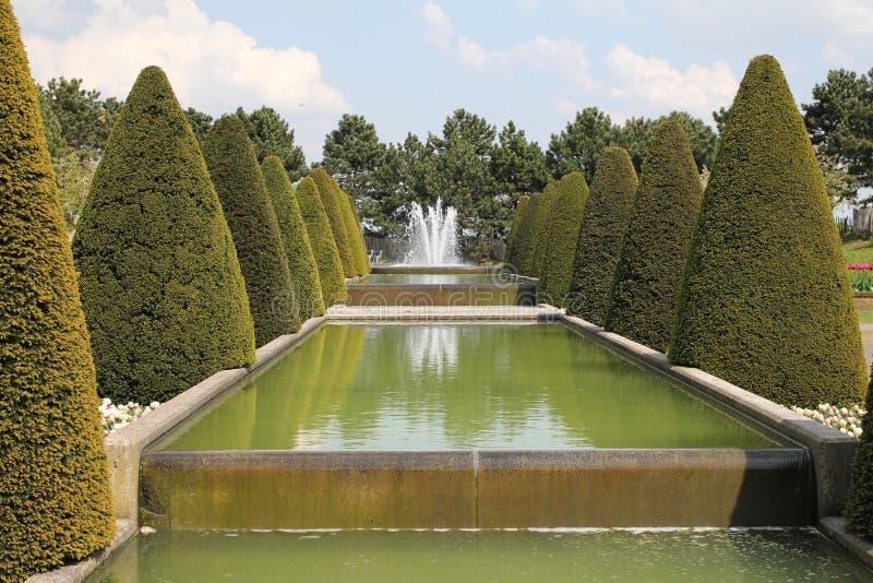 对称部分在一个庭院里用水和一棵喷泉和圆锥形树在双方 免版税图库摄影